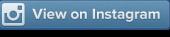 ver en instagram