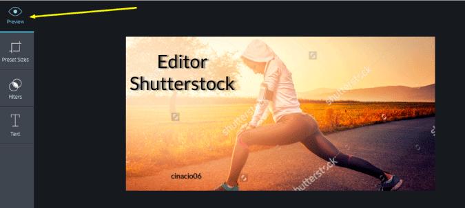 previsualización imagen en editor shutterstock