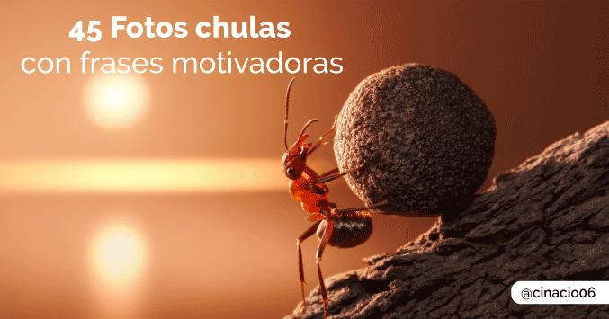 45 Fotos Bonitas Con Frases Motivadoras De Superación Personal