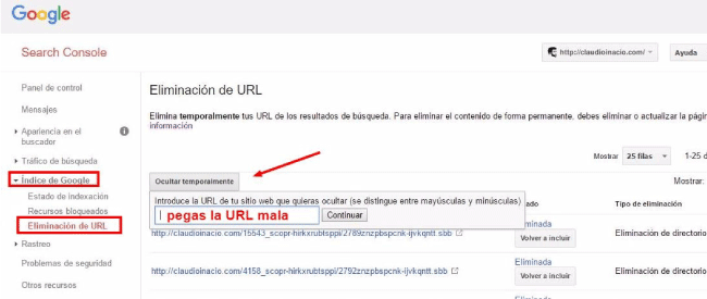 cómo eliminar urls de Google con search console