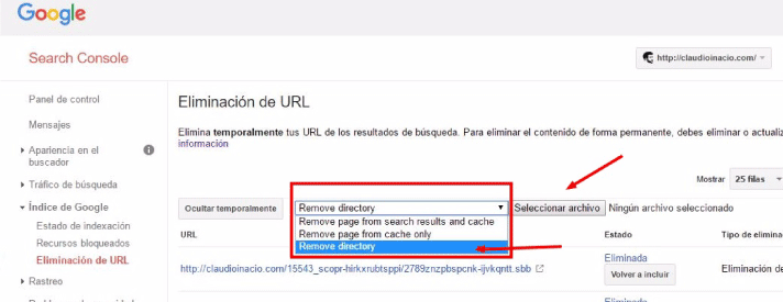 subir fichero .txt a Search Console