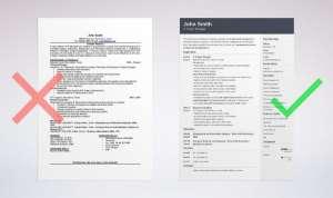 ejemplo de curriculum web