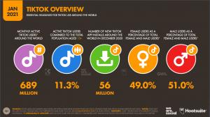 Datos de TikTok 2021
